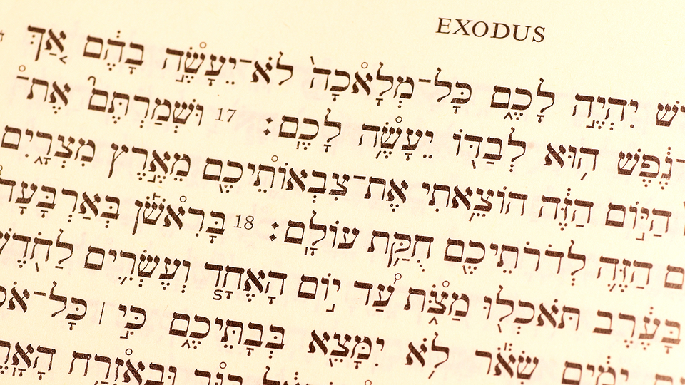 Covenant And Law In Exodus